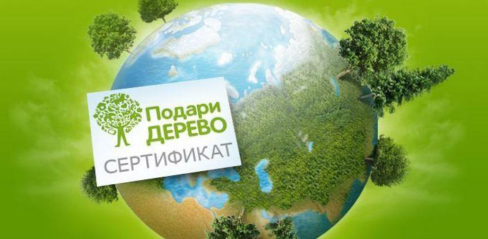 Идеи бизнеса в сочетании с экологией